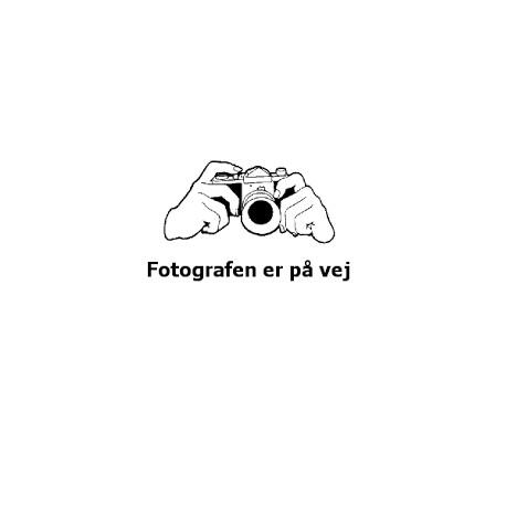 Svenbo55+, Emmentalertype, sød/tør